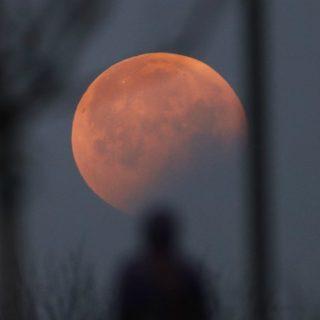Lo spettacolo dell'eclissi invade i social
