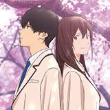"""Arriva il 3° film del ciclo Anime al cinema. """"Voglio mangiare il tuo pancreas"""" 21-22-23 gennaio."""