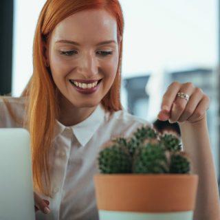 """2019: come vivere """"green"""" a casa e in ufficio"""