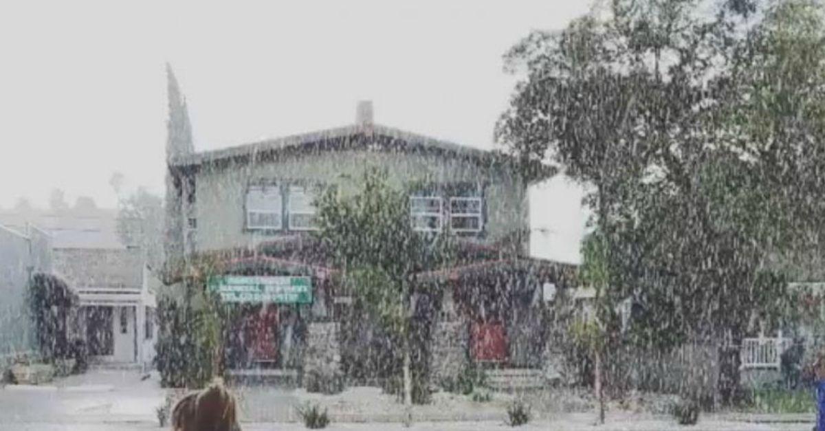 Usa, la nevicata imbianca Los Angeles: non succedeva dal 1949