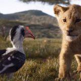 Il Re Leone, il nuovo e incredibile trailer del film: Simba è tornato!