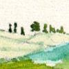 carlaulivieri