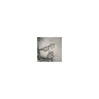 Domenico Bravo