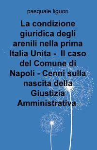 La condizione giuridica degli arenili nella prima Italia Unita – Il caso del Comune di Napoli – Cenni sulla nascita della Giustizia Amministrativa