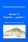 copertina di Rimm' 'e Napule……paisà.