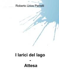 I larici del lago – Attesa