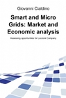 Smart and Micro Grids: Market and Economic analysis