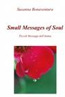 copertina Small Message of Soul