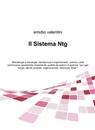Il Sistema Ntg