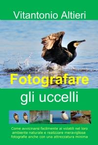 Fotografare gli uccelli
