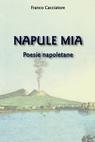 copertina Napule Mia