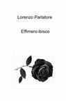 Effimero ibisco