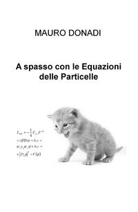 A spasso con le Equazioni delle Particelle