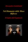 copertina Nel Diamante delle Muse Riflesse