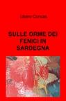 copertina SULLE ORME DEI FENICI IN SARDEGNA