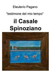 il Casale Spinoziano