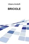 copertina BRICIOLE