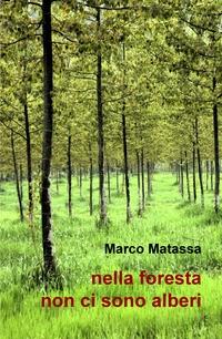 nella foresta non ci sono alberi