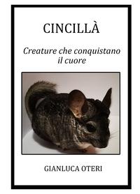 Cincillà – creature che conquistano il cuore