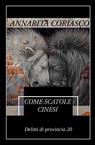 copertina COME SCATOLE CINESI