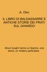copertina IL LIBRO DI BALDASSARRE E...
