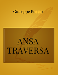 ANSA TRAVERSA