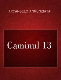 Caminul 13