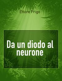 Da un diodo al neurone