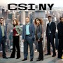C.S.I. - New York