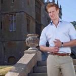 I wanna marry Harry, come cercare un principe... e prendere un granchio