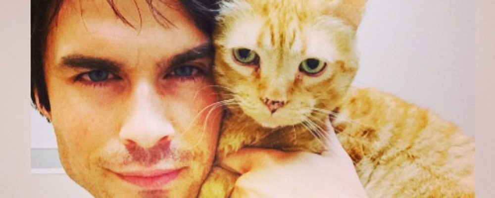 Ian Somerhalder, addio a The Vampire Diaries