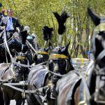 Funerali Casamonica: aggredita troupe della trasmissione Agorà