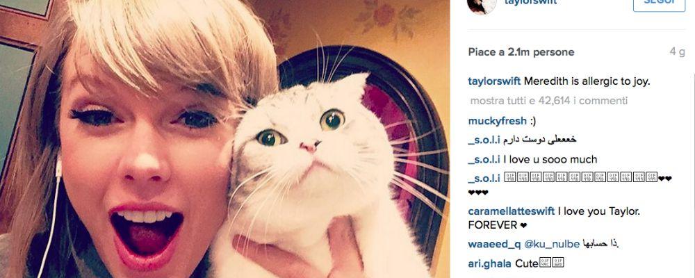Taylor Swift: regina di Instagram con 50 milioni di follower grazie ai suoi gattini