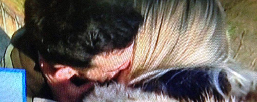 Uomini e donne, scatta il bacio fra Lucas e Karolina, Giulia D. e Andrea sempre più vicini