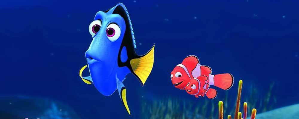 Alla ricerca di Dory: trailer, trama e curiosità sul sequel di Nemo