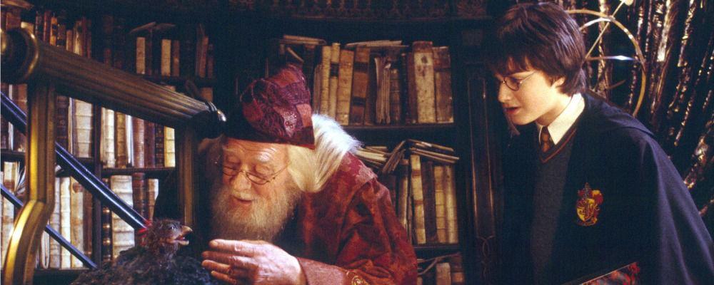Harry Potter e la camera dei segreti: cast, trama e curiosità del secondo capitolo della saga