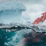 Su Sky ecco 'Un mare da salvare - Artic peril',  l'impresa del nuotatore estremo Lewis Pugh