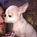 Valerio Scanu, la sua vita felice con 10 chihuahua