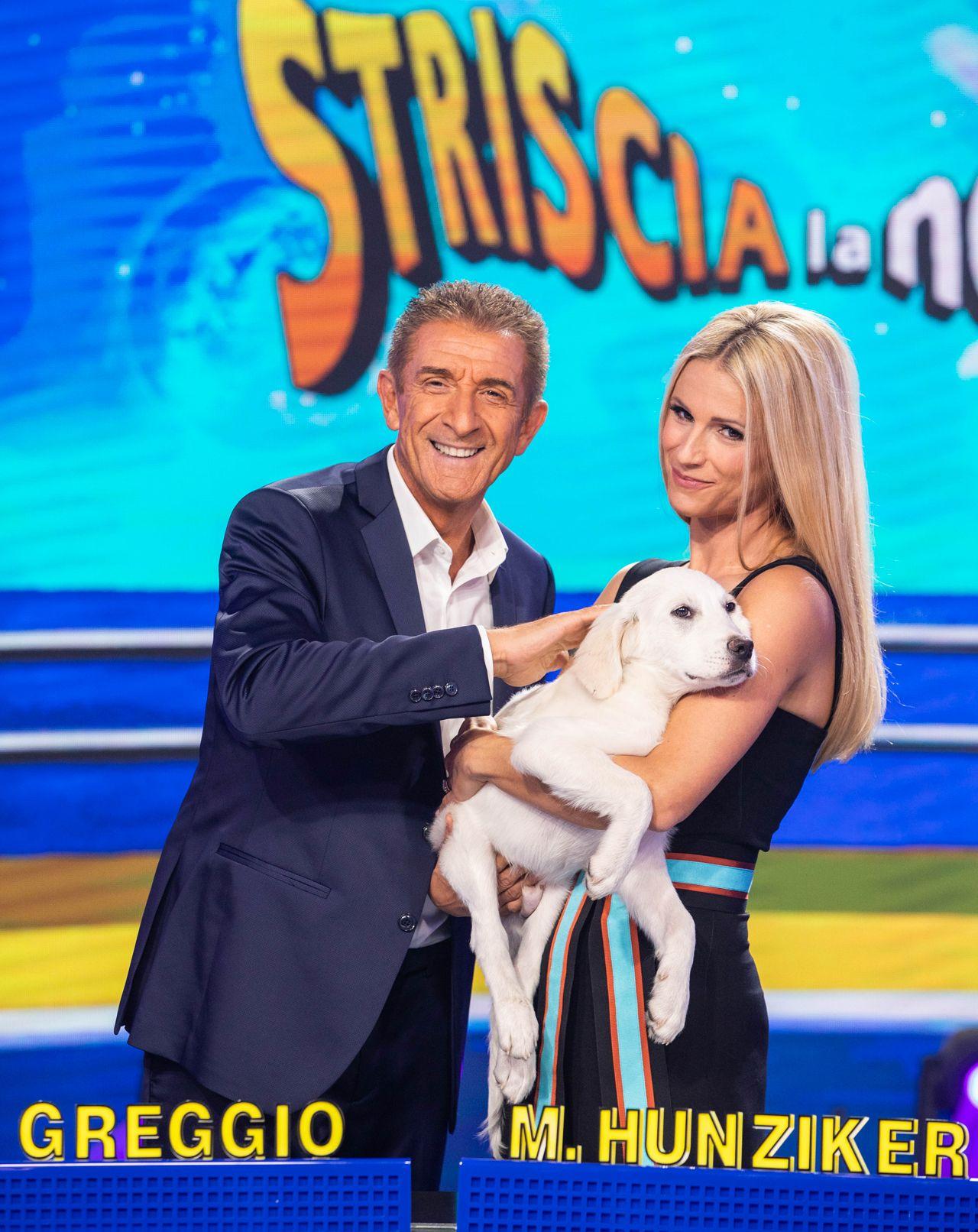 Hashtag, la storia del cagnolino di Striscia la notizia