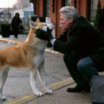 Hachiko - Il tuo migliore amico: trama, cast e curiosità del film con Richard Gere