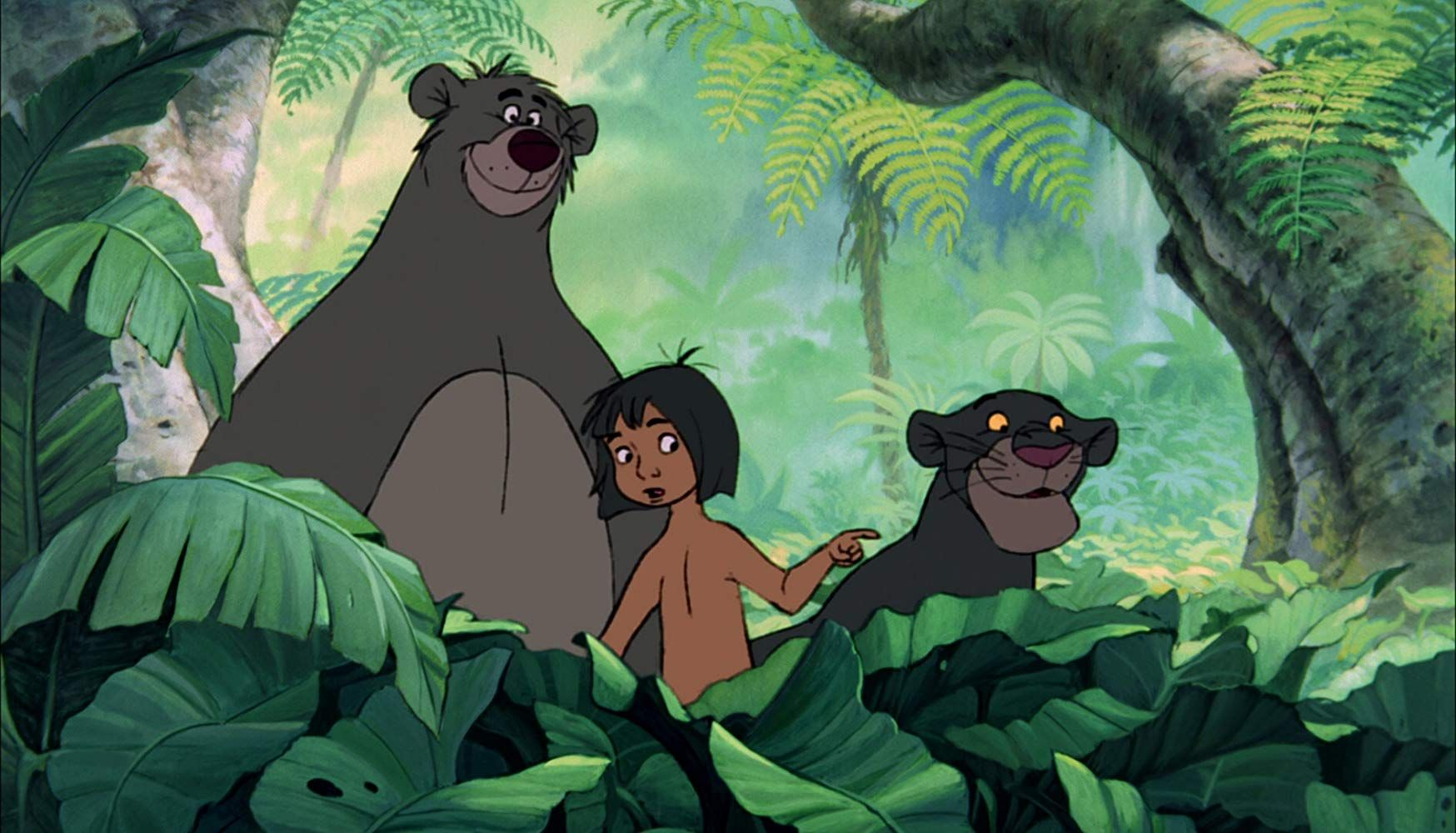 Il libro della giungla trama e curiosità sull iconico cartone