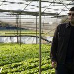Gomorra, la quarta stagione in chiaro su Tv8, trama e curiosità della serie