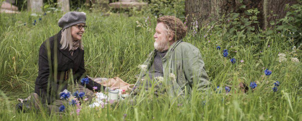Appuntamento al parco: trama e cast del film con Diane Keaton tratto da una storia vera