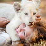 Mia e il leone bianco, la ragazzina che sussurrava al leone senza effetti speciali