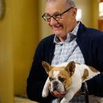 Lutto a Modern Family: è morta Stella, la bulldog che interpretava la cagnolina di Jay