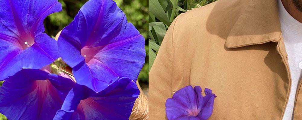 Belen, De Martino, Marcuzzi: se nel presunto triangolo spunta un fiore blu