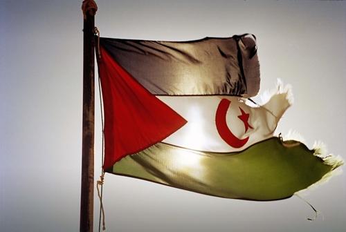 I saharawi tornano a sperare