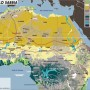 Avorio, l'oro bianco del jihad