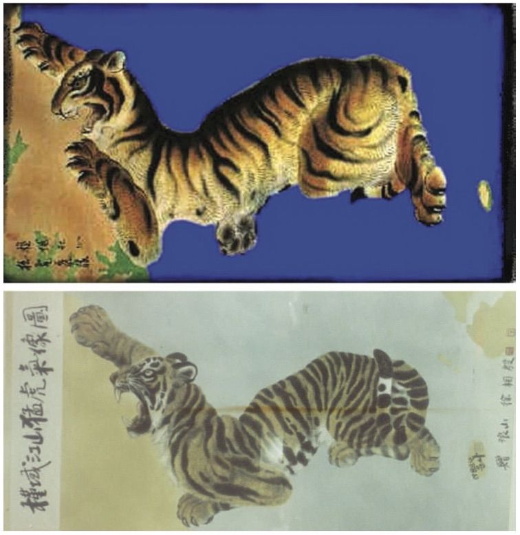 tigre_boria_1216