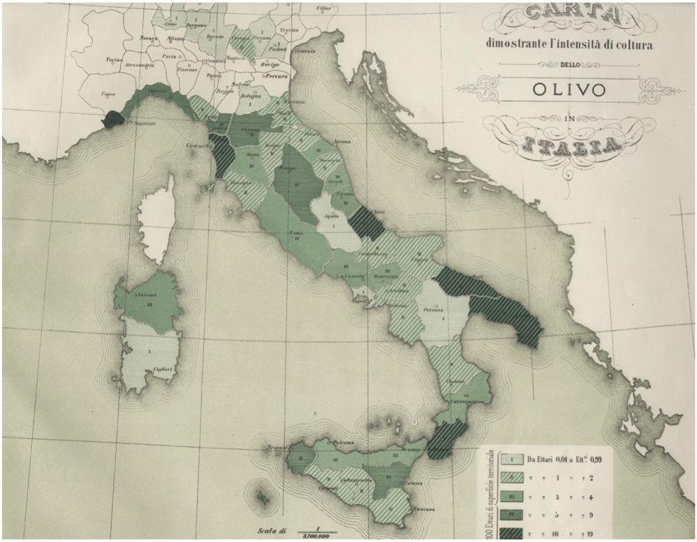 carta_olivo_italia_boria_0417